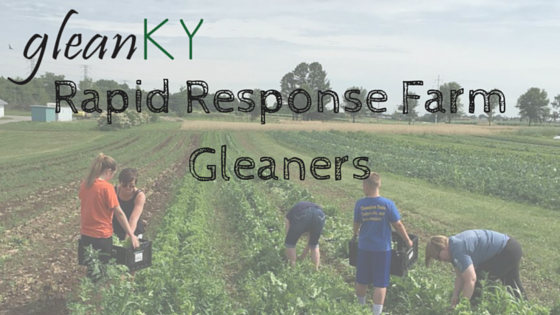 Rapid Response Gleaners