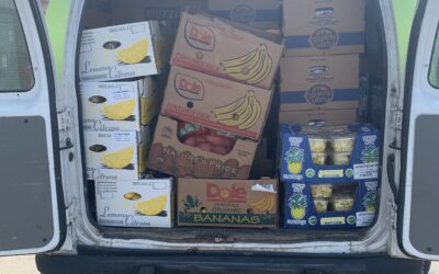A New Volunteer's Perspective on Gleaning